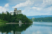 Niedzica castle — Stock Photo