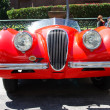 Stock Photo: 1951 Jaguar XK120 ots