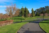 Paved path in a park — Stock Photo