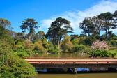 Most w parku — Zdjęcie stockowe