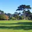 Golden gate park — Photo