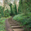 Stairs in a park — Stock Photo