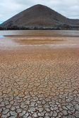 Dry red soil with cracks on Galapagos islands. — Stock Photo