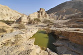 Zohar fortezza nel deserto. — Foto Stock