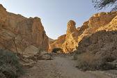 ワディ ゾハー キャニオン、ユダヤ砂漠. — ストック写真