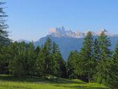 Alpy letní pohled — Stock fotografie