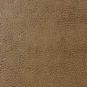 Sandelwood Brown Leather — Stock Photo