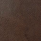 Pecan Brown Leather — Stock Photo