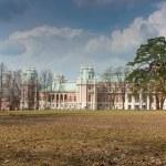 Большой дворец в Царицыно, Москва — Stock Photo