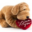 Dog Soft Toy with heart saying I Love You — Stockfoto