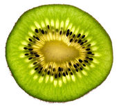 Kiwi Fruit Slice — Stock Photo