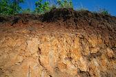 Details voor lagen van de bodem onder grondoppervlak — Stockfoto