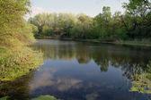 Uitzicht op de rivier, ochtend — Stockfoto