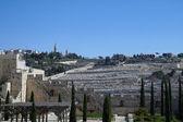 Terre sainte de jésus christ - tourisme de pèlerins chrétiens en israël — Photo
