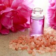 Aroma oil in bottle with pink peony — Stock Photo