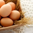Brown eggs — Foto de Stock