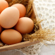 Brown eggs — Foto Stock