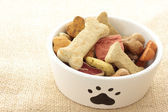 Dog food in bowl — Stockfoto