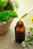 Ziołolecznictwo z butelka kroplomierzem — Zdjęcie stockowe
