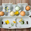 Royalty-Free Stock Photo: Organic colorful eggs