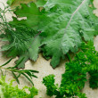 Variety of leafy vegetables — Stock Photo