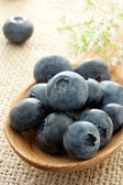 Fresh blueberries — Foto Stock