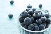 Bleuets frais — Photo