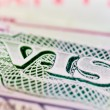 U.S. VISA — Stock Photo