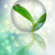 Young plant in the bubble — Stockfoto