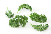 Fresh Kale — Stock Photo