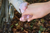 Helping Hand in Autumn — Stock Photo