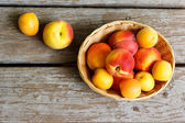Juicy peaches and apricots — Stock fotografie