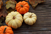 Autmun pumpkins — Stock Photo