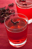 Hibiscus herbal tea — Stock Photo