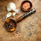 Peppercorn, Garlic and Sea Salt — Stock Photo