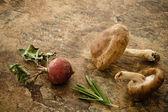 Radish, shitake mushroom — Stock Photo