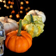 Halloween pumpkins with skull — Stock Photo