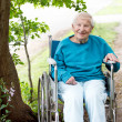 Senior Lady in Wheelchair Smiling — Stockfoto #9525109