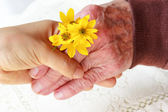 Senior & Young Ladies Holding Hands — Foto Stock
