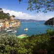 Portofino view — Stock Photo #10057639