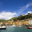 Portofino view — Stock Photo