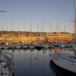 Sailboats in trieste at sunset — Stock Photo