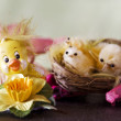 Tender chick over easter background — ストック写真