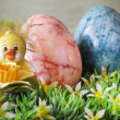 Tender chick over easter background — Stockfoto