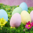 Easter eggs on a flowering garden — Stockfoto