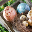 Easter decoration — Stockfoto