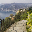 Stock Photo: Panoramic view from Portofino mount
