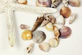 Havet skal sammansättning — Stockfoto