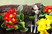 Herramientas de jardinería y primaveras — Foto de Stock