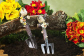 Gardening tools and primroses — Stock Photo
